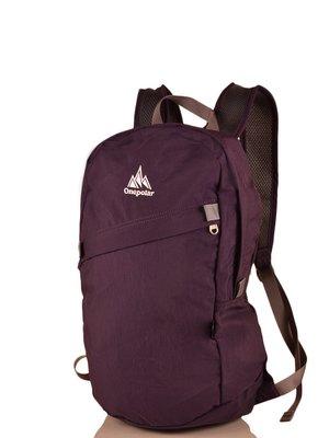 Рюкзак фіолетовий | 3924406