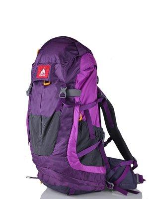 Рюкзак фіолетово-сірий | 3924462