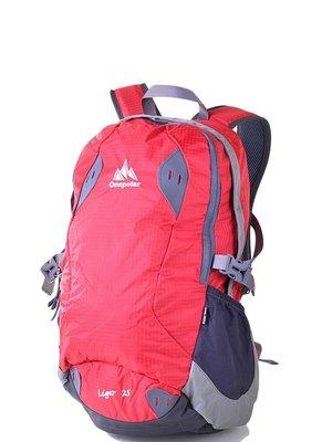Рюкзак двоколірний | 3924467