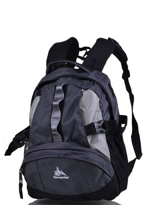 Рюкзак чорно-сірий | 3924488