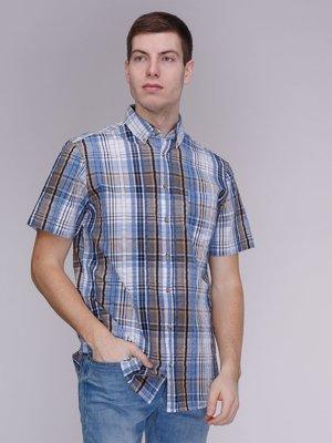 Рубашка голубая в клетку | 3984128