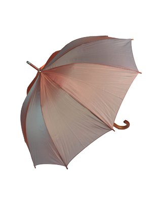 Зонт-трость (хамелеон) | 4032380