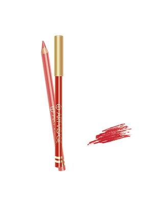 Карандаш для губ - №202 — красно-коричневый (5 г) | 4064361