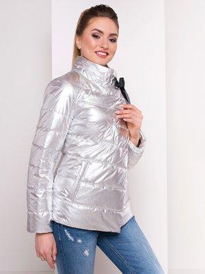 Куртка сріблястого кольору | 4104741