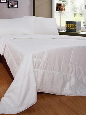 Одеяло двуспальное (евро) (200х220 см) | 4133421
