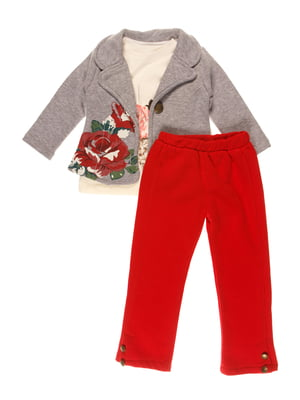 Комплект на флисе: жакет, реглан и брюки | 3877579