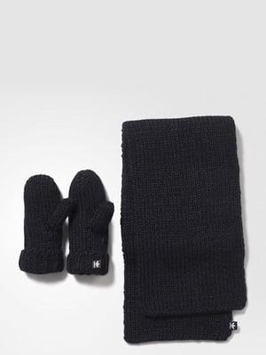 Комплект: шарф і рукавиці | 3793921