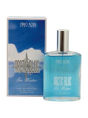 Парфюмированная вода Arctic Blue (100 мл) | 4307717