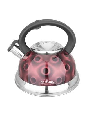 Чайник со свистком (3 л) | 4457077