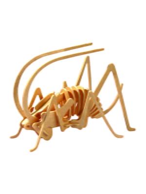 Сборная модель из дерева, 3D пазл «Сверчок» | 4635079