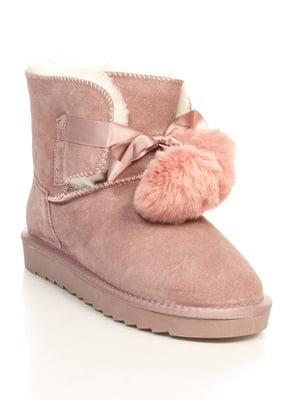 Півчобітки рожеві | 4632192