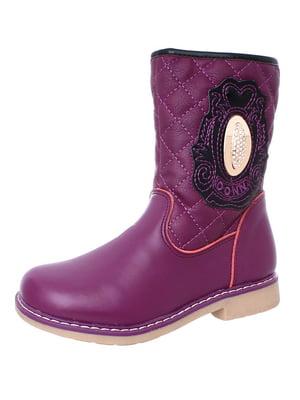 Чоботи фіолетові | 4653958