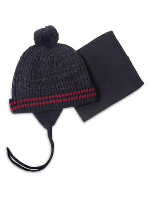 Комплект: шапка і манішка | 4781830