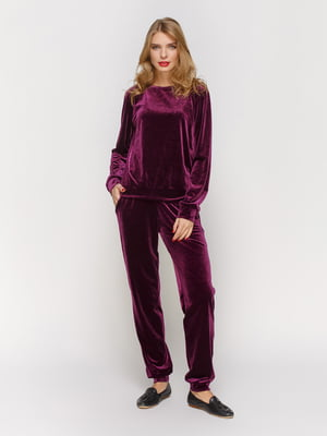 Костюм з оксамиту: джемпер і штани | 3182341