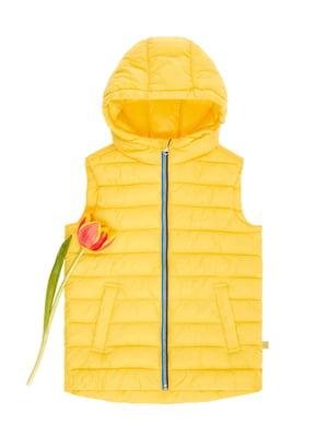 Жилет жовтий | 4864485