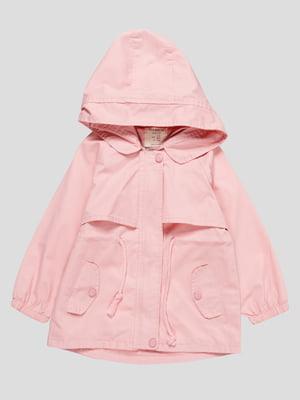 Вітрівка рожева   4889934