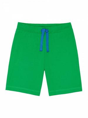Шорты зеленые | 4985416