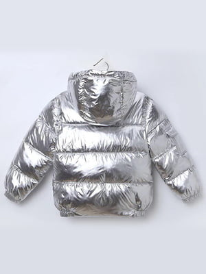 Куртка серебристая | 5202830