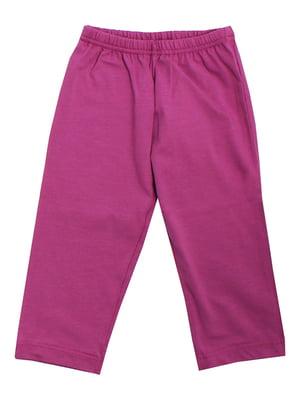 Штани фіолетові | 5247952