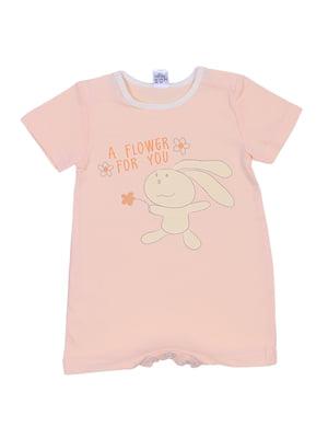 Пісочник персикового кольору | 5249537