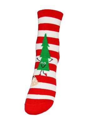 Шкарпетки червоні | 5252741