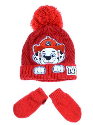 Комплект: шапка и рукавицы | 5253897