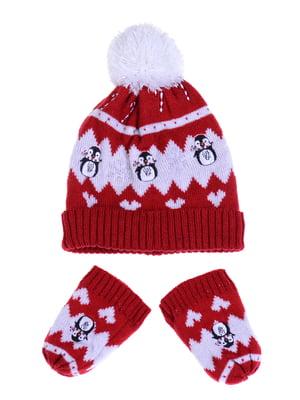 Комплект: шапка и рукавицы | 5254004