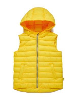 Жилет желтый | 5320565