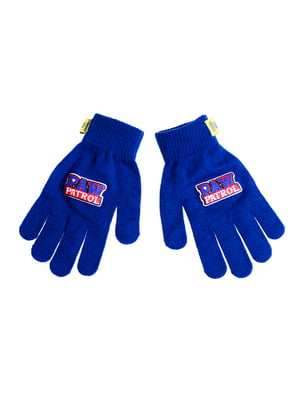 Перчатки синие | 5326239