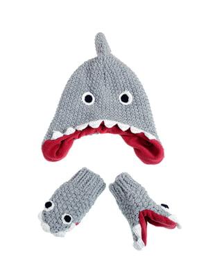 Комплект: шапка и рукавицы | 5326660