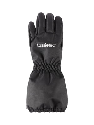 Перчатки черные | 5330727
