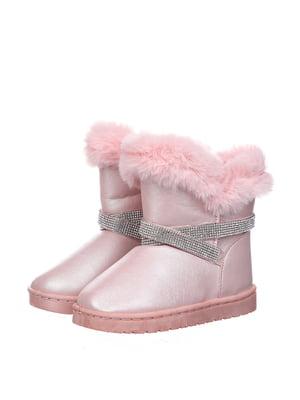 Півчобітки рожеві | 5360991