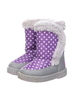 Півчобітки фіолетові | 5361008