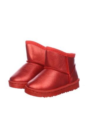 Півчобітки червоні | 5361020