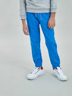 Штани спортивні сині | 5384653