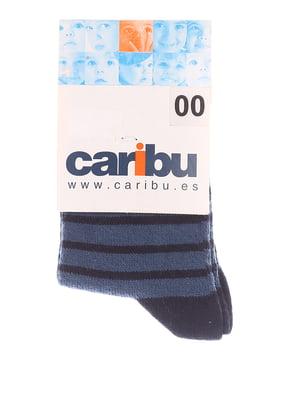 Шкарпетки сині у смужку | 5394569