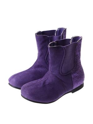 Півчобітки фіолетові | 5419298