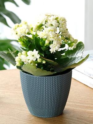 Горшок для цветов (0.5 л) | 5532975