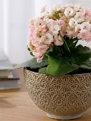 Горшок для цветов (15х15х9.5 см) | 5532979