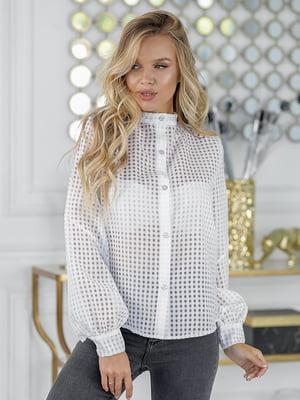 Блуза белая | 5561037