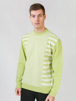 Джемпер салатового цвета в полоску   5559523