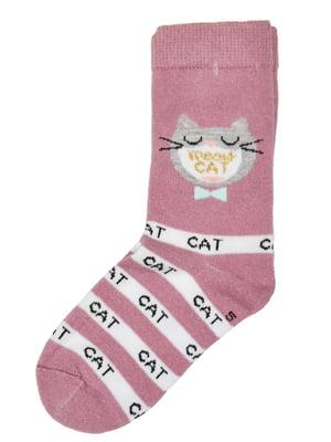 Шкарпетки бузкового кольору | 5582185