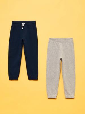Комплект брюк (2 пары) | 5582934