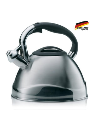 Чайник | 5583823
