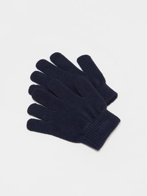 Перчатки синие | 5595392