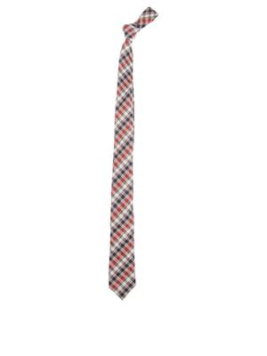 Краватка в клітинку | 5623014