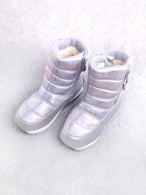 Чоботи сріблястого кольору   5648057