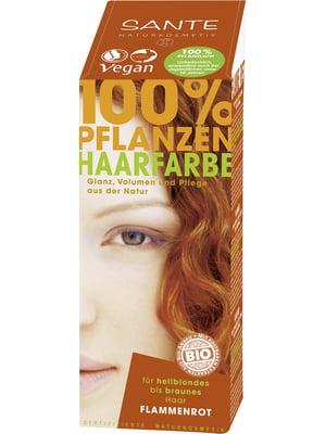Краска для волос | 5671407