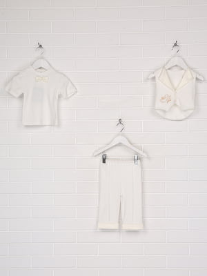 Костюм: жилет, футболка і штани | 5711738