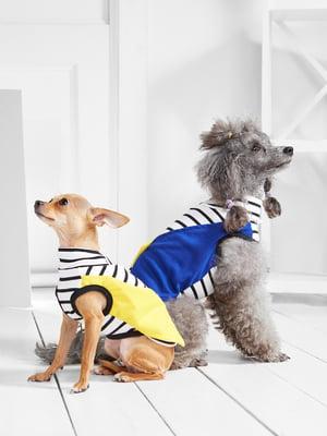 Футболка в смужку для собак маленьких порід   5775439